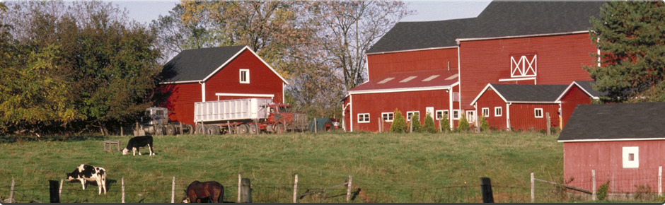 Farm Insurance Illinois